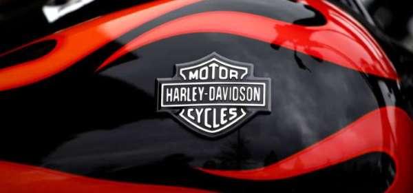 harley davidson in trouble insane throttle biker news