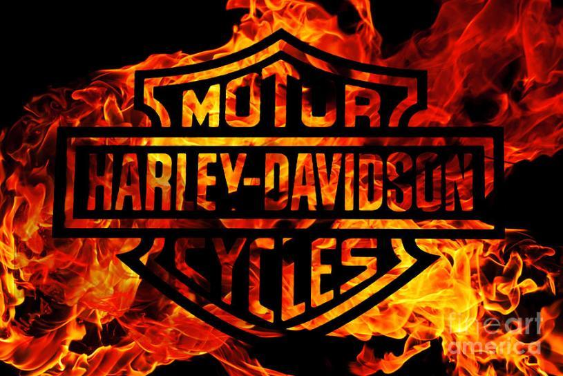 Harley Davidson EPA Lawsuit Insane Throttle Biker News