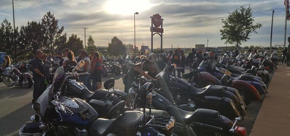 Motorcycle Rally Insane Throttle Biker News