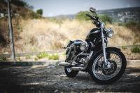 Harley Davidson Motorcycle Biker Insane Throttle